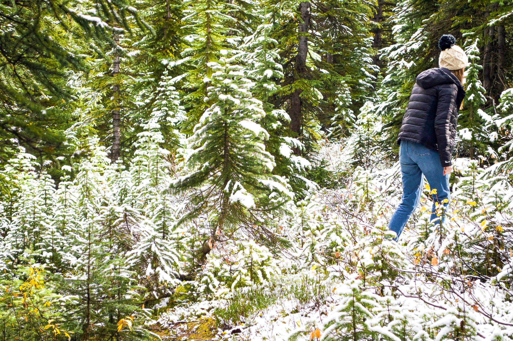 woman walking through Canadian forest in the snow