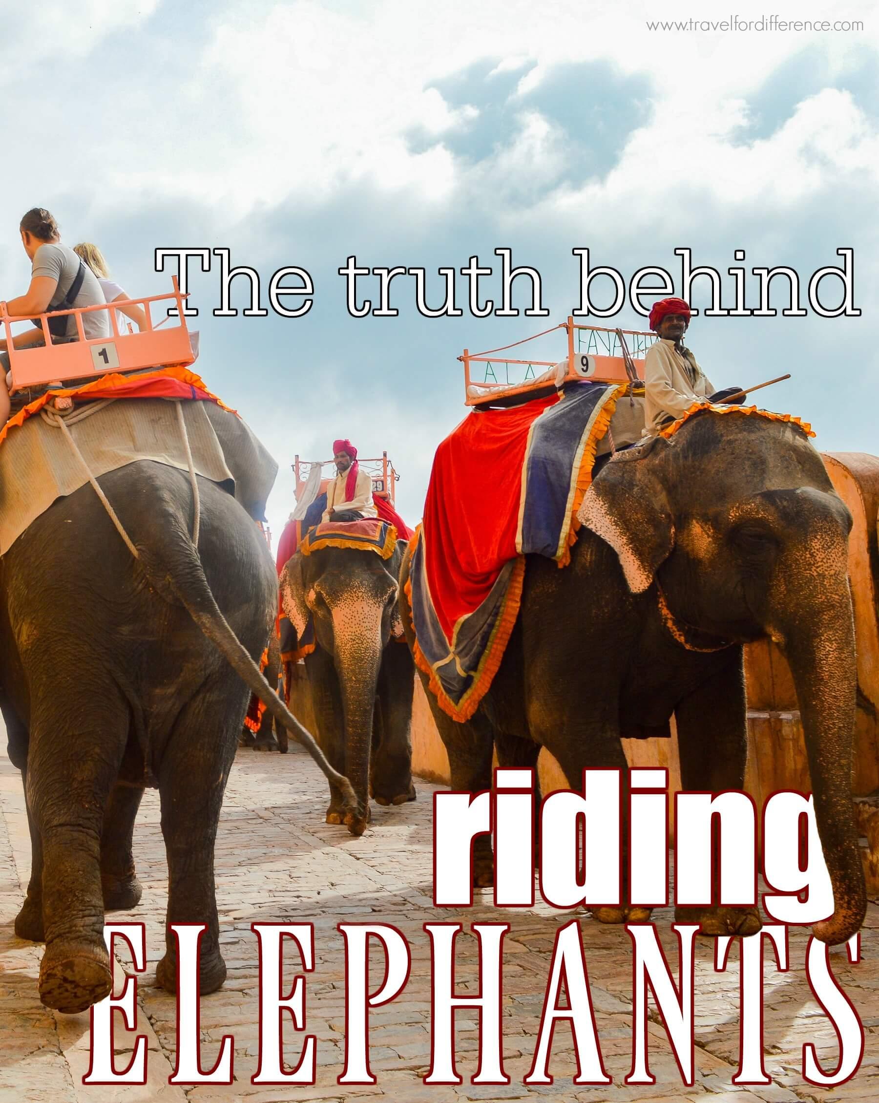 The Truth Behind Riding Elephants - Phajaan