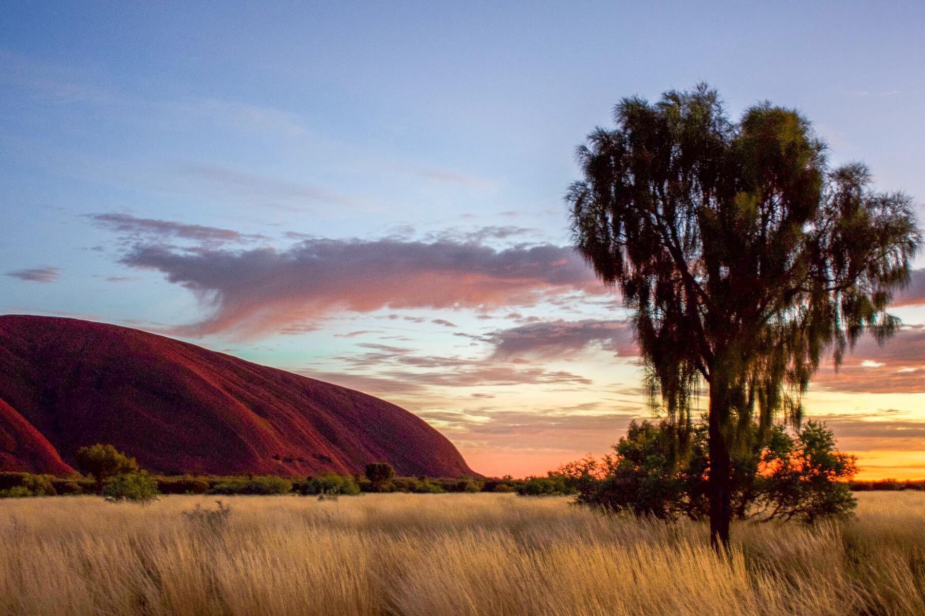 Blue/Pink sunrise behind Uluru