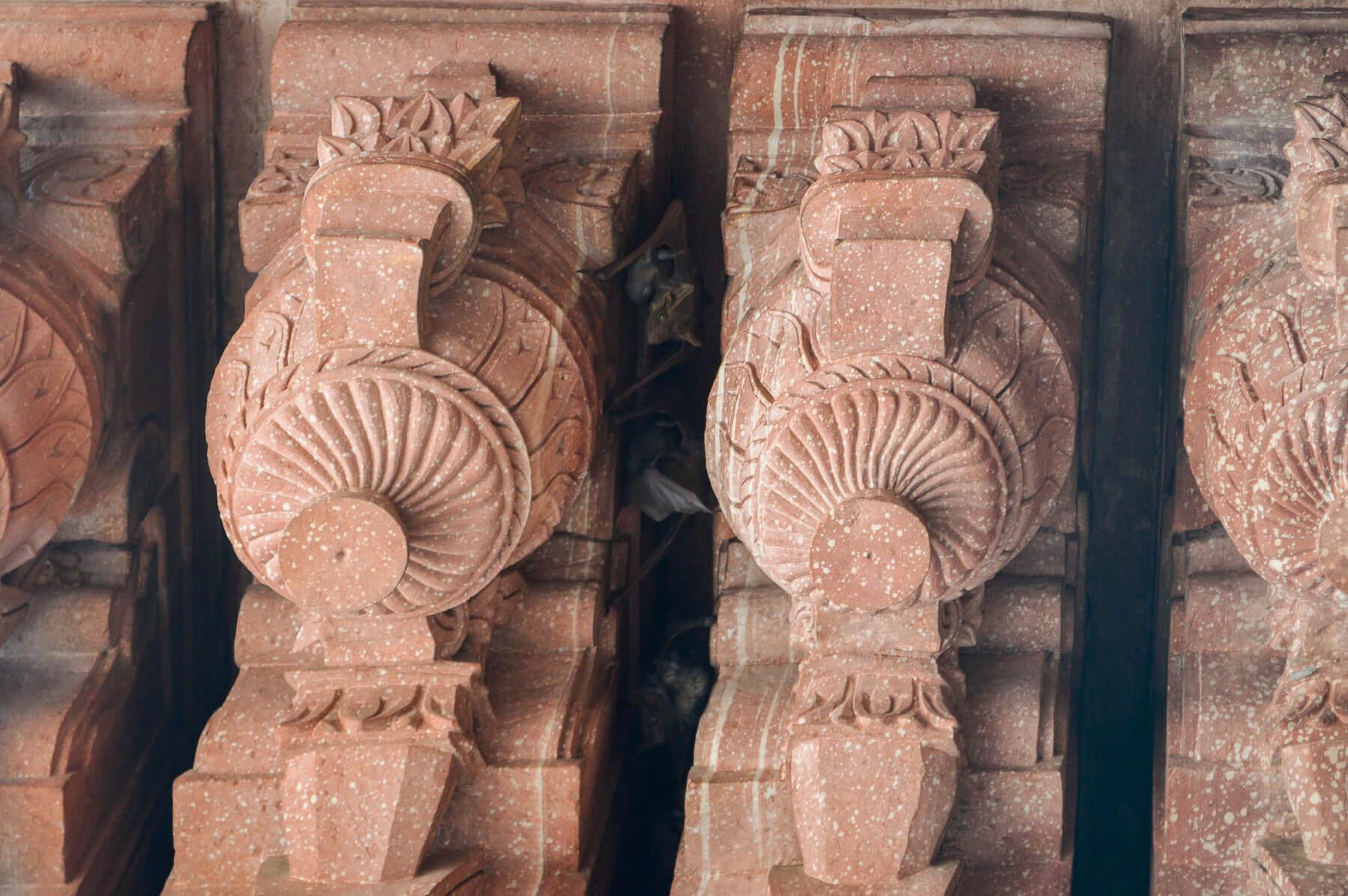 Bats hiding in the shadows of terracotta pillars