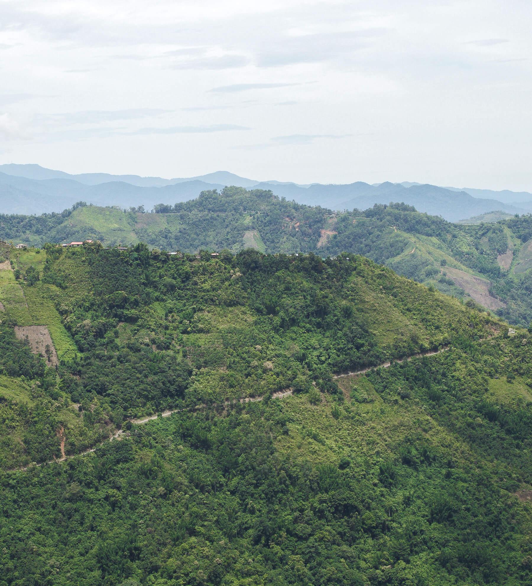 Luscious rolling hills in Borneo near Mount Kinabalu