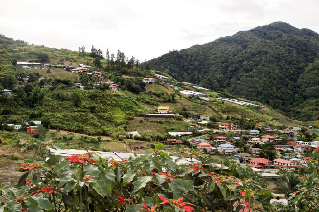 Colourful village on a hillside in Borneo