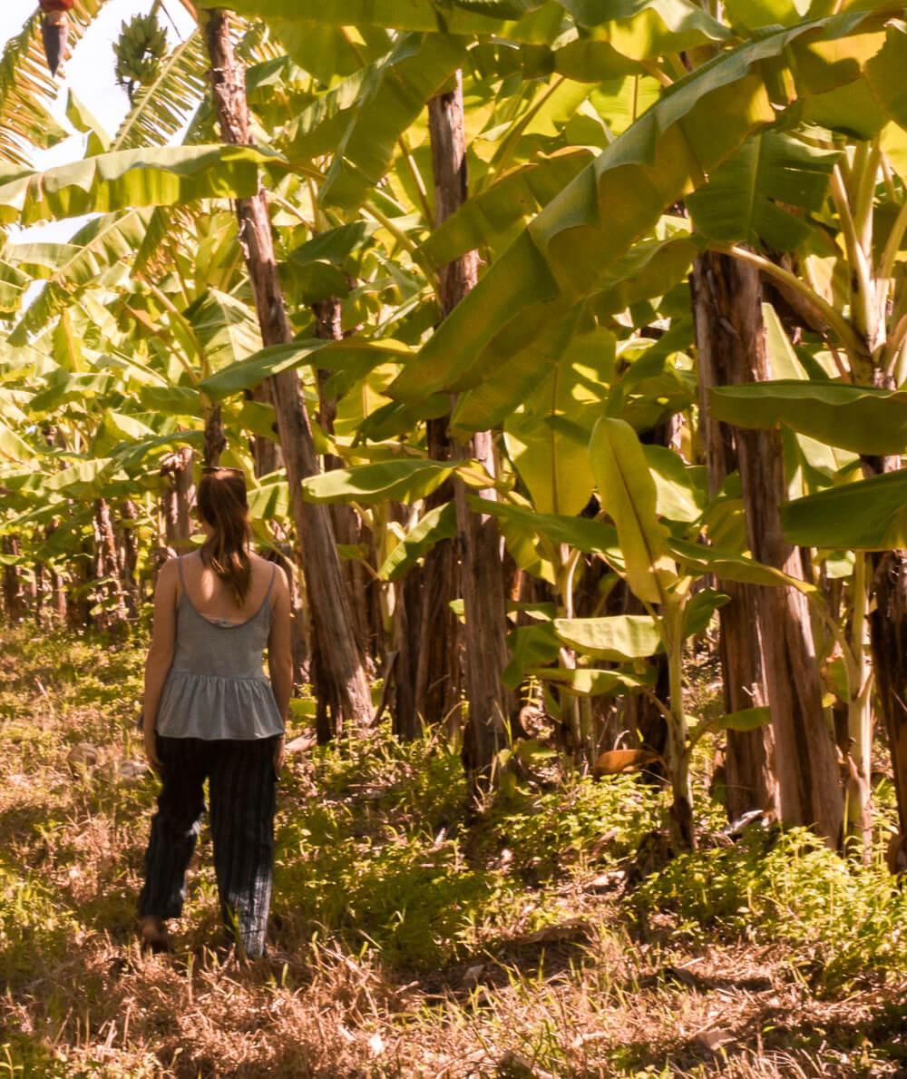 Girl walking through a banana plantation in Northern Queensland