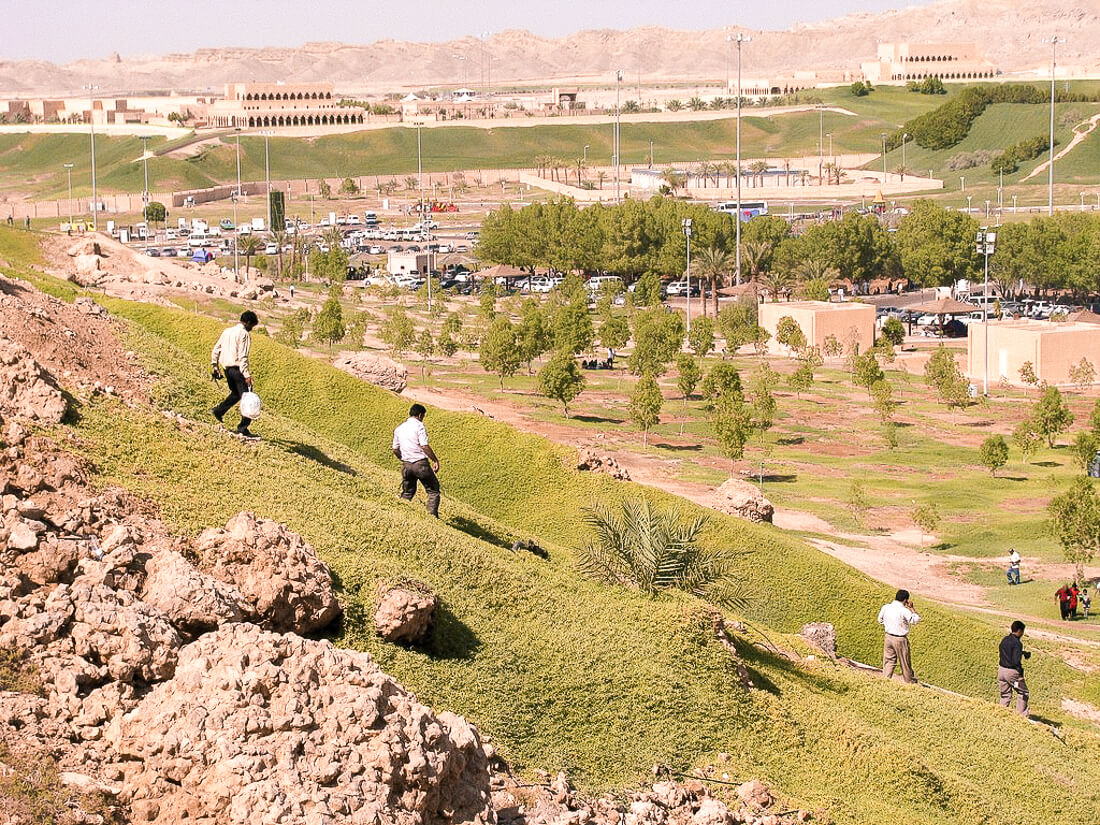 Men running down a grassy hill with Al Ain town in the background