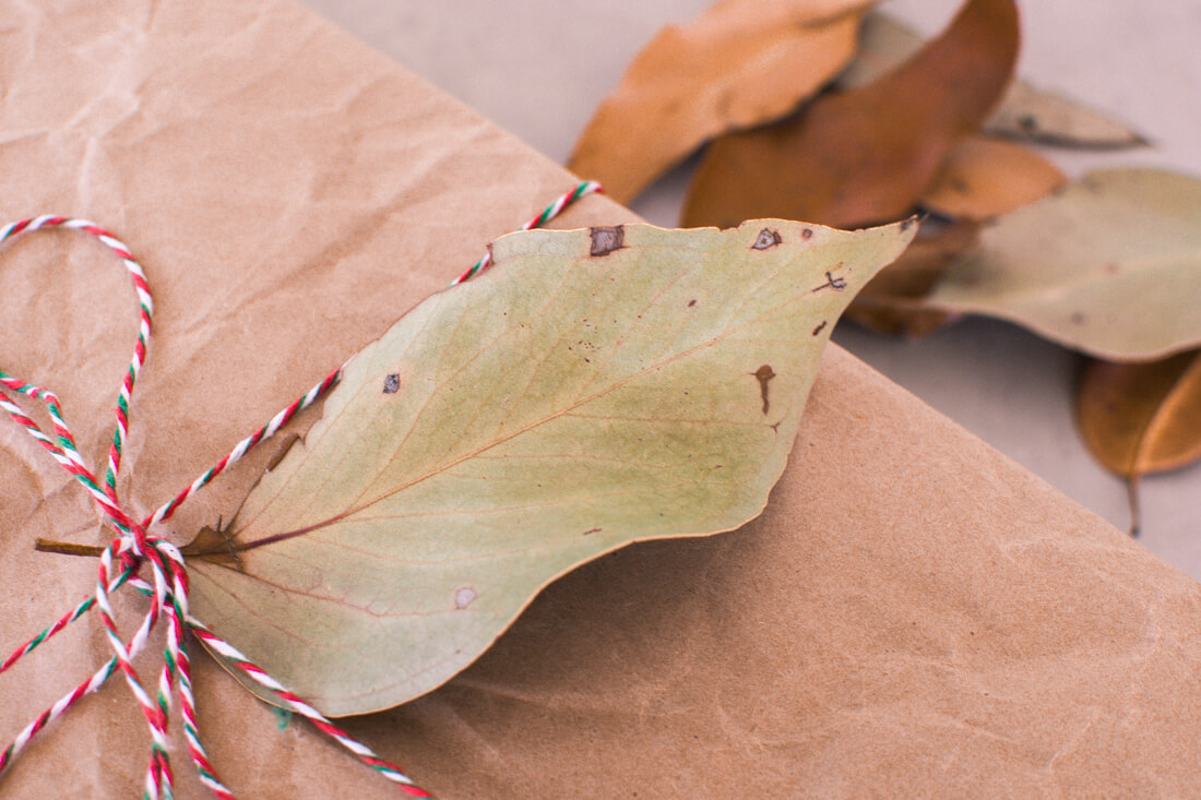 Present wrapped in brown paper with leaf used as gift tag